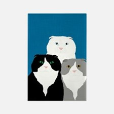 Scottish Fold Magnets