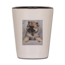 Keeshond Puppy Shot Glass