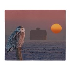 Snowly Owl Barn Scene Throw Blanket