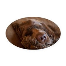 Unique Sussex spaniel Oval Car Magnet
