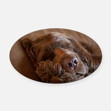 Cute Sussex spaniel Oval Car Magnet