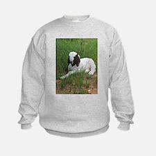Baby Billy Goat Sweatshirt