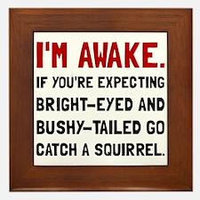 Go Catch Squirrel Framed Tile