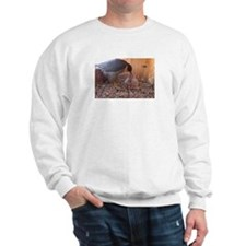 Unique Astrid Sweatshirt