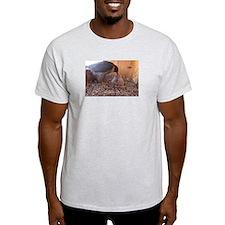 Cute Peregrine falcon T-Shirt