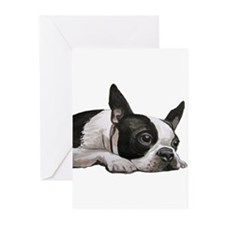 Funny Boston terrier Greeting Cards (Pk of 10)
