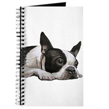 Cute Boston terriers Journal