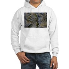 Obsidian and Lichen Hoodie