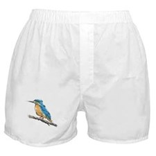 Kingfisher Boxer Shorts