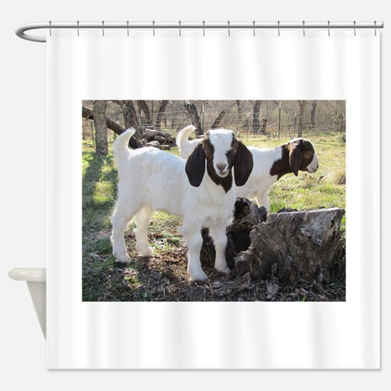 Cute Baby goat Shower Curtain