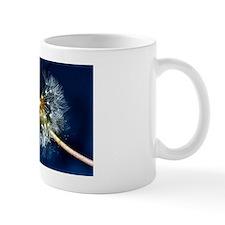 Cool Dandelion wishes Mug