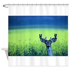 Canola Buck Shower Curtain