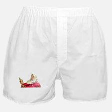 Santa's Merry Christmas Boxer Shorts
