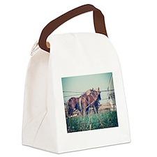 Unique Amish Canvas Lunch Bag