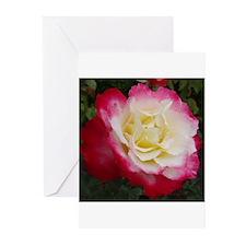 Rose #1 Greeting Cards