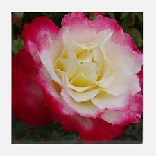 Rose #1 Tile Coaster