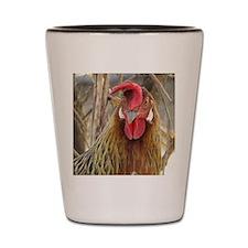 Grumpy Hen! Shot Glass