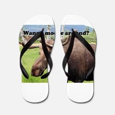 Wanna moose around? Alaskan moose Flip Flops