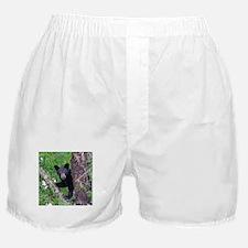 I SEE YOU - Baby Black Bear Boxer Shorts