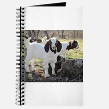 Twin Kids In The Woods Journal
