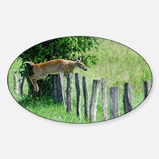 DOE DEER jumping a Fence Decal