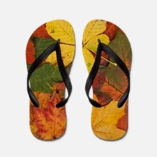 fall leaves flip flops fall leaves flip flops sandals cafepress. Black Bedroom Furniture Sets. Home Design Ideas