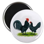 Blue Dutch Chickens Magnet