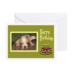 Chihuahua Birthday Greeting Cards (Pk of 10)