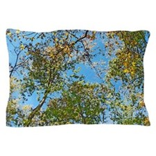 Spring is Here! With Dry Brush Pillow Case