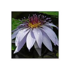 Caferopa Lotus Flower Sticker