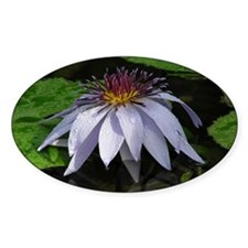 Caferopa Lotus Flower Decal