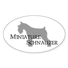 Mini Schnauzer Curly Text Oval Decal