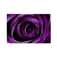 Purple Rose Flower Magnets