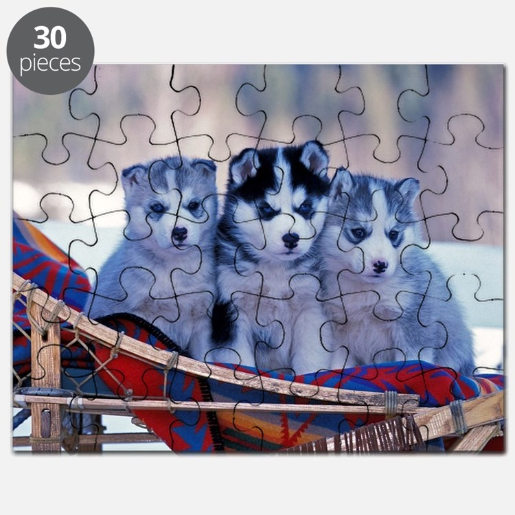 Husky Puppies Puzzle