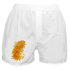 Horn_Music Boxer Shorts