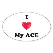 I Love My Ace Decal