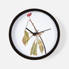 Louisiana Water Thrush Wall Clock