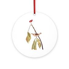 Louisiana Water Thrush Ornament (round)