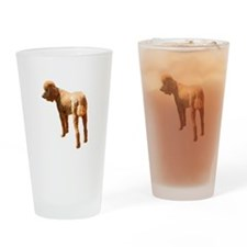 Funny Red poodle Drinking Glass