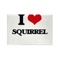 I love Squirrel Magnets
