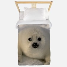 Baby Seal Twin Duvet
