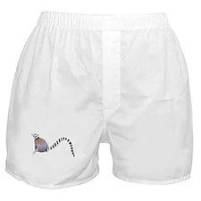 Cartoon Ring-Tail Lemur Boxer Shorts