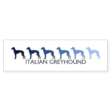 Italian Greyhound (blue color Bumper Sticker