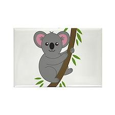 Cartoon Koala in a Tree Magnets