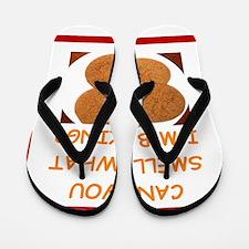 snickerdoodle Flip Flops