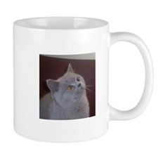 British Shorthair cat Mugs