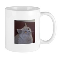 British Shorthair cat Mugs