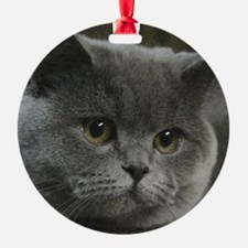 10x10lightwww.jpg Ornament