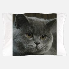 10x10lightwww.jpg Pillow Case