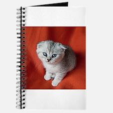 Scottish Fold Journal